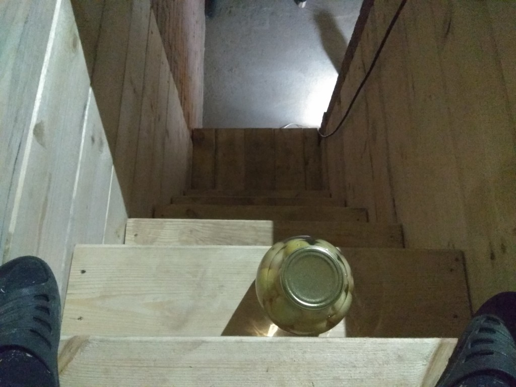 Погреб на кухне в частном доме
